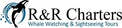 Puget Sound Whale Watching and Sightseeing Tours Logo